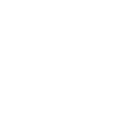 WSF Award