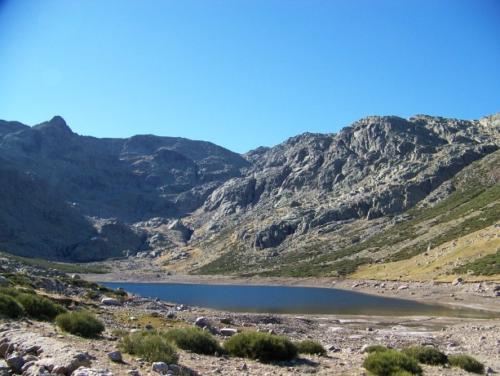 Gredos Ibex area