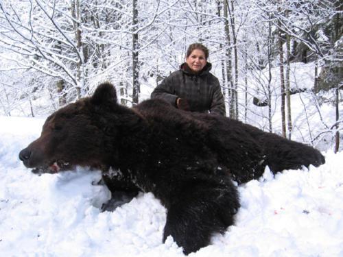 European_Brown_Bear008