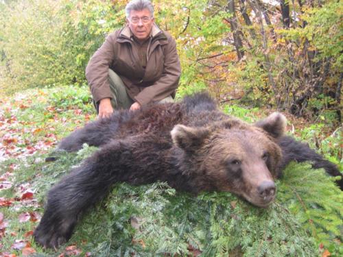 European_Brown_Bear010