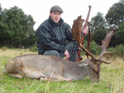 European_Fallow_Deer010