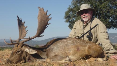 European_Fallow_Deer017