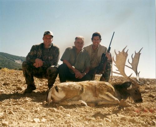 European_Fallow_Deer021