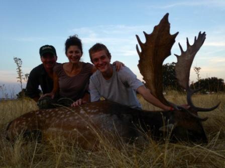 European_Fallow_Deer023