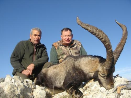 James_Brogan_WV_Beceite_Ibex