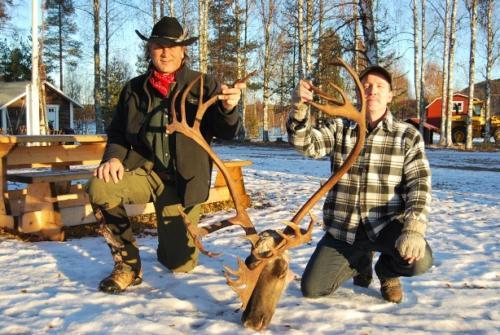 Reindeer005