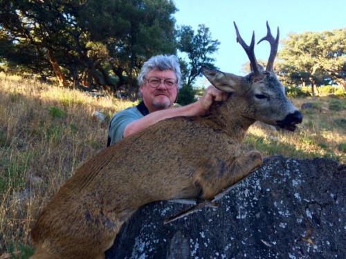 Roe_Deer020