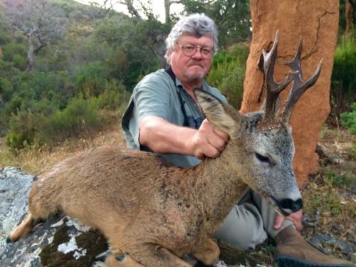 Roe_Deer022