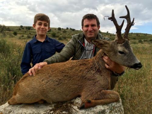 Roe_Deer024
