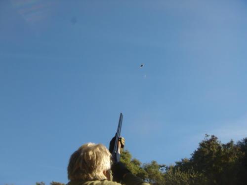 Shooting017