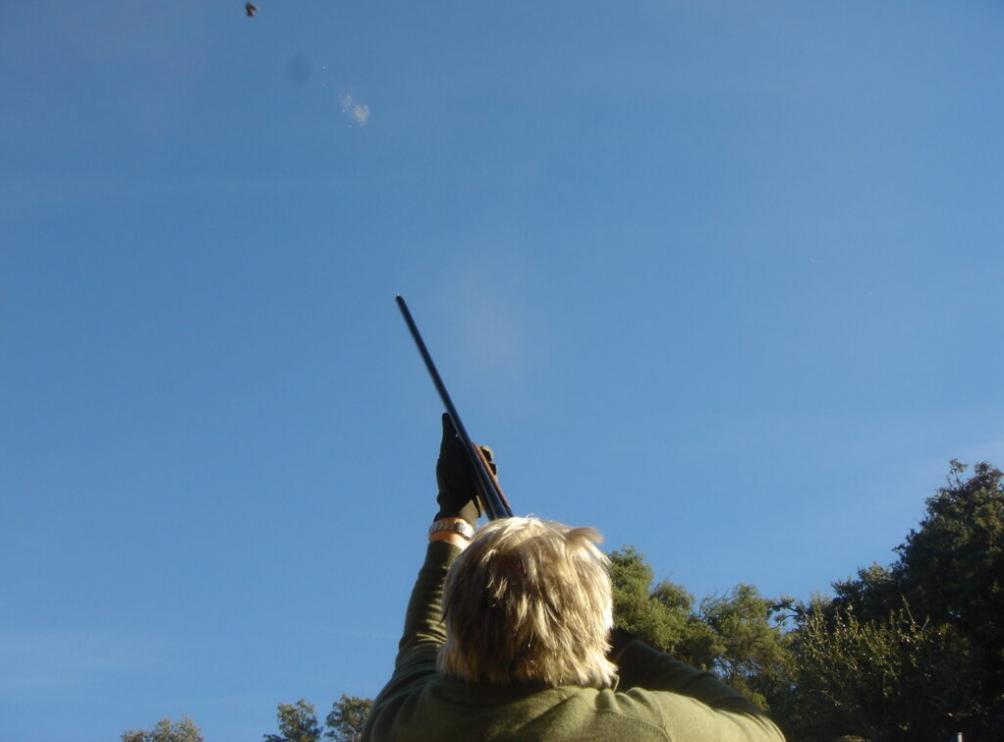 Shooting019