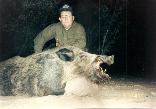 Wild_Boar020