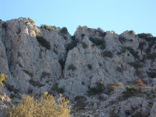 SOUTH EASTERN  RONDA IBEX MOUNTAINS (4)